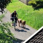 Fahrrag im Tal 150x150 Ferien in Tirol....