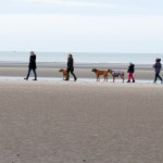 Last Day of the Walk 2015 150x150  Feiertage am Meer in Belgien