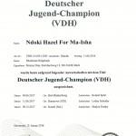 doc01364820180201134558 150x150 Jugend Championitin