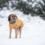 ZOE im Schnee 3 150x150 Die Leidenschaft ...
